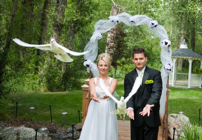 0deea30dab14aa Випускаємо голубів - все про весілля від А до Я
