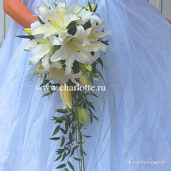 свадебный размер ведущие диетолог