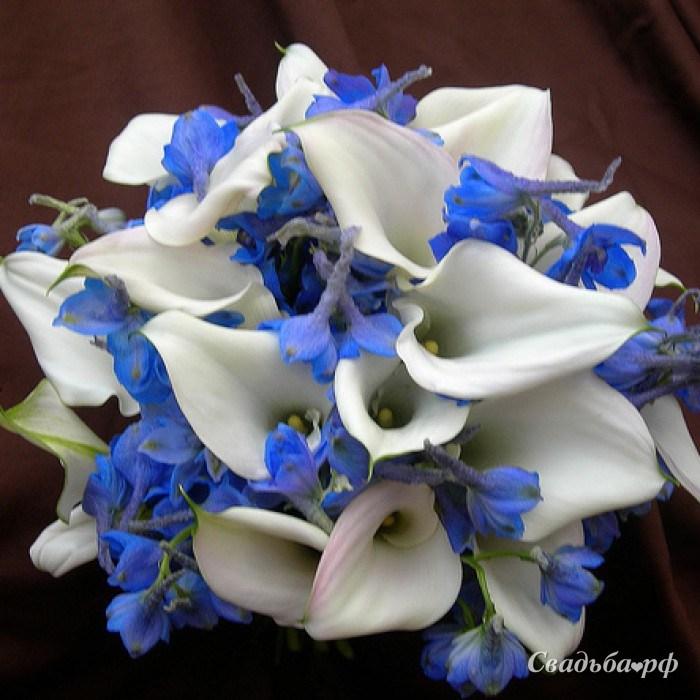 Голубые калл в свадебный букет цена, букеты купить